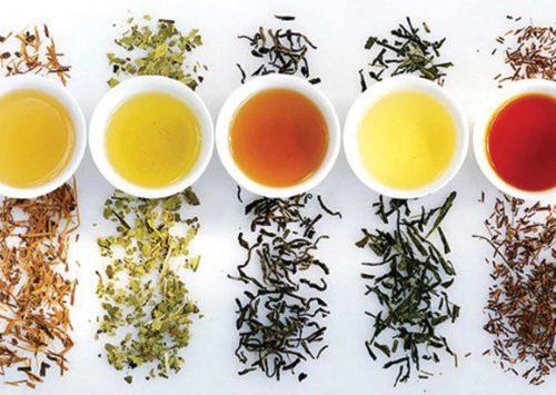 TOP 10 najzdravijih biljnih čajeva